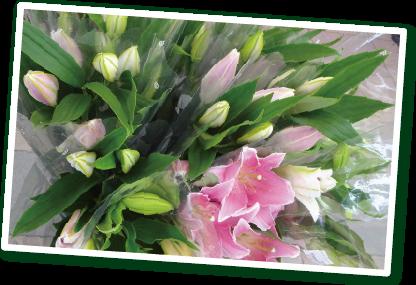 毎朝届く野菜と花